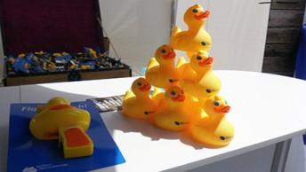 Enten Wasserfest 2013