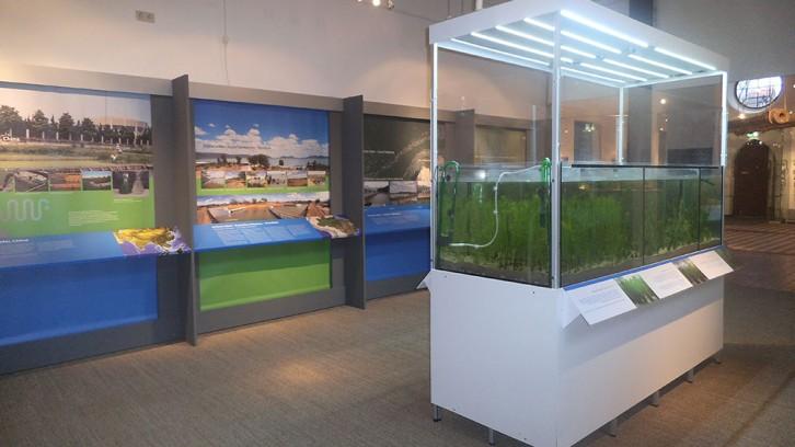 Ausstellung Grüne Leber